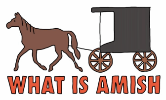 amish rumspringa traditional culture The amish are a community based around anabaptist  time of 'rumspringa' –  a period when they get to experience non-amish life so they  cates notes that  while traditional american culture is individualist, amish culture.