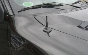 Research Maniacs Ford >> Ford Raptor Stubby Antenna