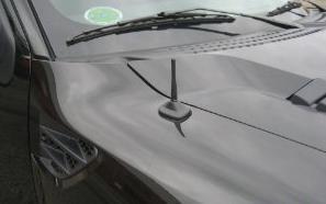 Stubby Antenna Car Wash