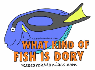 What kind of fish is Dory What Type Of Fish Is Dory