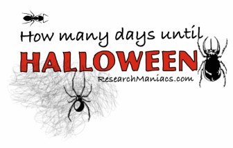 How many days until Halloween 2024?